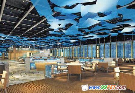 首家海底餐厅青岛入水鱼陪人进餐(图)