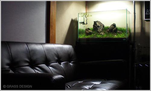 小草缸布景_水草缸造景沉木水草泥化妆砂青龙石60CM尺寸设计19_水景堂