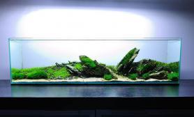 水草缸造景沉木水草泥化妆砂青龙石方缸、非标尺寸尺寸设计03