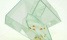 创意鱼缸鱼儿不再孤单(多图)