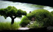 独树造型MOSS灵魂树
