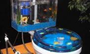 鱼缸上大小便两款创造性马桶(多图)
