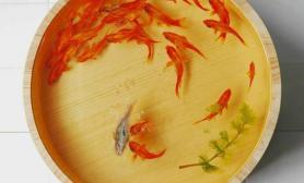 金鱼饲养中传统容器的介绍