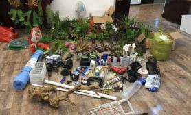 水草造景深景意林雨林世界(一):毒物水草缸4米雨林缸