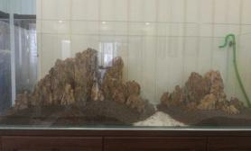 松皮石 骨架