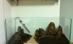 新手水草缸自己刚建的一个1图片2米石景草缸过程