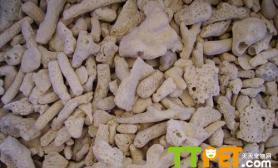 海水箱珊瑚沙的妙用