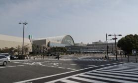 2013日本宠物展