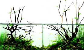沉木青龙石水草造景45CM及以下尺寸设计34