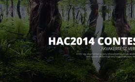Hungarian Aquascaping Contest 2014 前40名作品