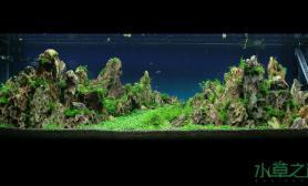 水草造景过年前为客户做的1图片5米山景缸