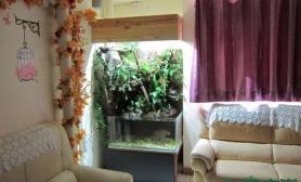 [转载]温馨小窝中的水路缸