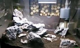 水草造景新购的青龙石 30小缸初步方案 求指点鱼缸水族箱
