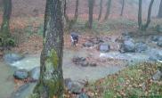去河滩捡石头造景啦!