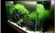 鱼缸玻璃的材质有哪些