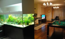沉木青龙石造景缸与家装空间-50