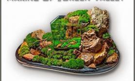 """这款超级""""特立独行""""的水草缸水草缸是不是你的菜?"""