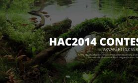 Hungarian Aquascaping Contest 2014