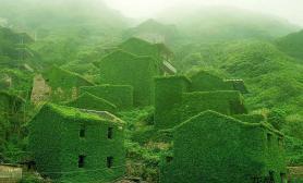 一个被绿色覆盖的美丽村庄