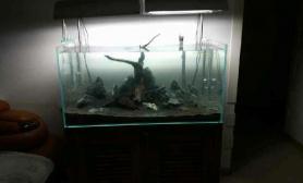 新手造景鱼缸水族箱求各位大神指点鱼缸水族箱