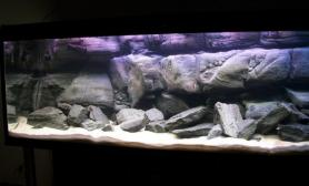 沉木青龙石原生态鱼缸13