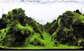 水草缸造景沉木迷你矮山景青龙石90CM尺寸设计火山石