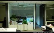 沉木青龙石造景缸与办公空间-03