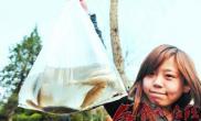 花冲公园湖水到污染大量鱼儿漂上水面(图)
