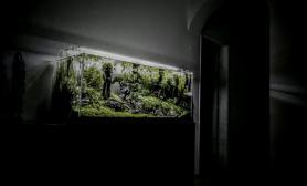 荒郊野外造景超白缸LED照明