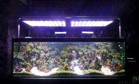 鱼缸造景这样的瀑布景才青出于蓝鱼缸水族箱
