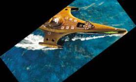 """国际反捕鲸环保组织""""哥斯拉""""正面对峙日本捕鲸船(多图)"""