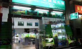 国内水族店水草缸造景广东深圳尺寸设计景立方自然水族