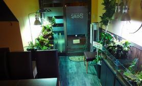 沉木青龙石造景缸与商业空间-36