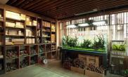 如此优雅的环境水草缸不像是水草店水草缸倒有些咖啡厅的味道