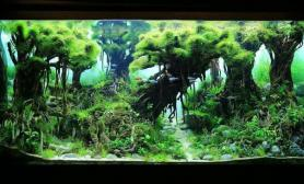90CM 大树造景图片