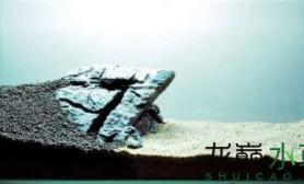 水族箱造景造景之路:水草造景(60CM)-39