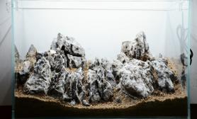 50缸青龙石造景-驼溪