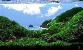 仰观蓝天白云俯瞰青山绿水