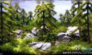 水族箱造景俄罗斯水草造景展示