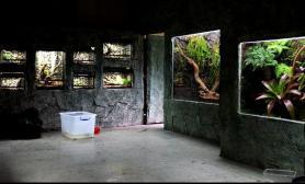 深圳野生动物园爬行动物馆工程