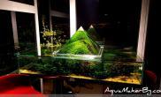 金字塔形缸中缸另类异形水草缸