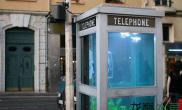 看完这个电话亭水草缸为还在玩鱼缸的小伙伴默哀三分钟水族箱