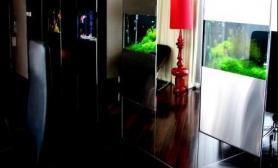 沉木青龙石造景缸与商业空间-18