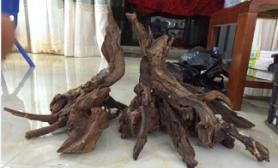 木头组合骨架