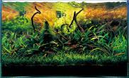 水草缸造景沉木水草泥化妆砂青龙石60CM尺寸设计20