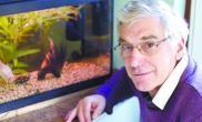 英国最长寿金鱼今年34岁(图)
