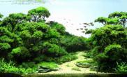 水草缸造景沉木水草泥化妆砂青龙石120CM尺寸设计60