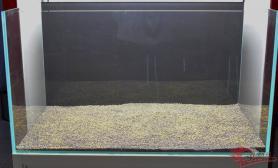 水草缸造景沉木水草泥化妆砂青龙石90CM尺寸设计20