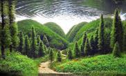 我最喜欢的一个ADA造景了水草缸貌似是荷兰人的?