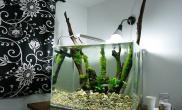 造景之路水草缸造景原生态鱼缸06